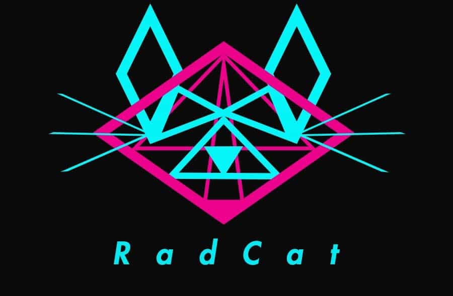 Photo of New Release: Rad Cat – Without U