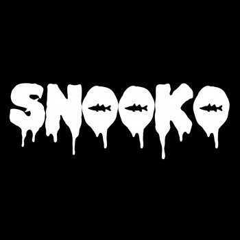 "Photo of Upcoming DJ Snooko Releases New Track ""Graveyard Medley"""