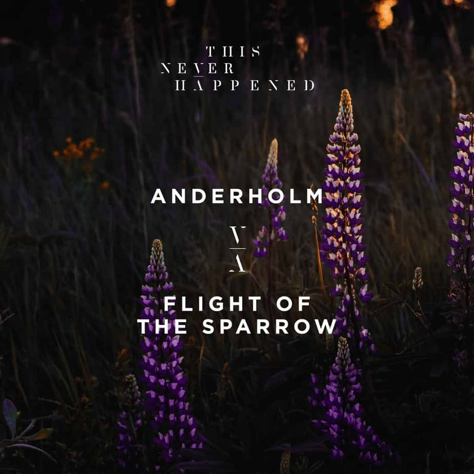 Photo of Anderholm releases 'Flight of the Sparrow' EP
