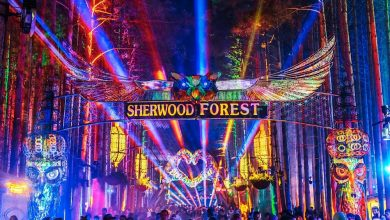 Photo of Electric Forest Staffer Cuts Hundreds of Electric Forest Volunteers Just Days Shy of Event