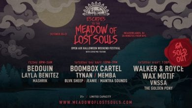 Photo of Elements Music & Arts Festival's Meadow of Lost Souls